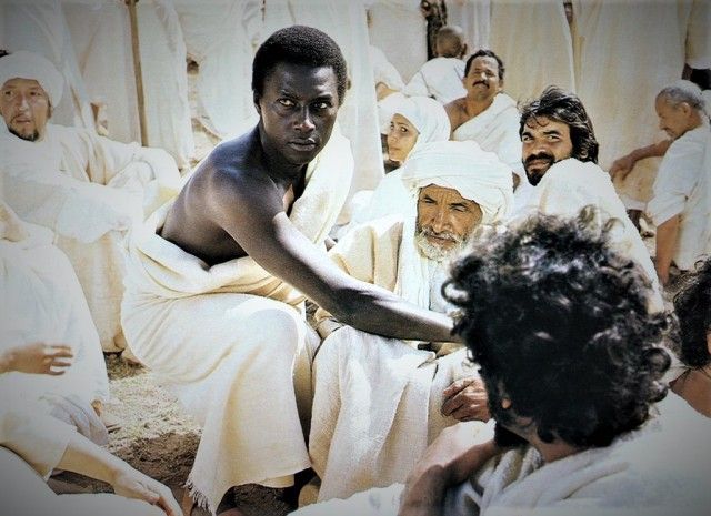 schiavo